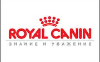 ROYAL CANIN Россия (ЭКСПО-АРТ)