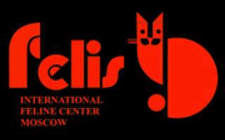 ФЕЛИС Международный Фелинологический центр