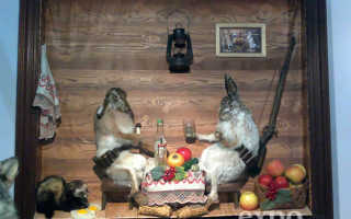 9-я международная выставка «Охота. Рыбалка. Отдых. Осень 2010»